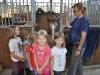 kinder + pferd